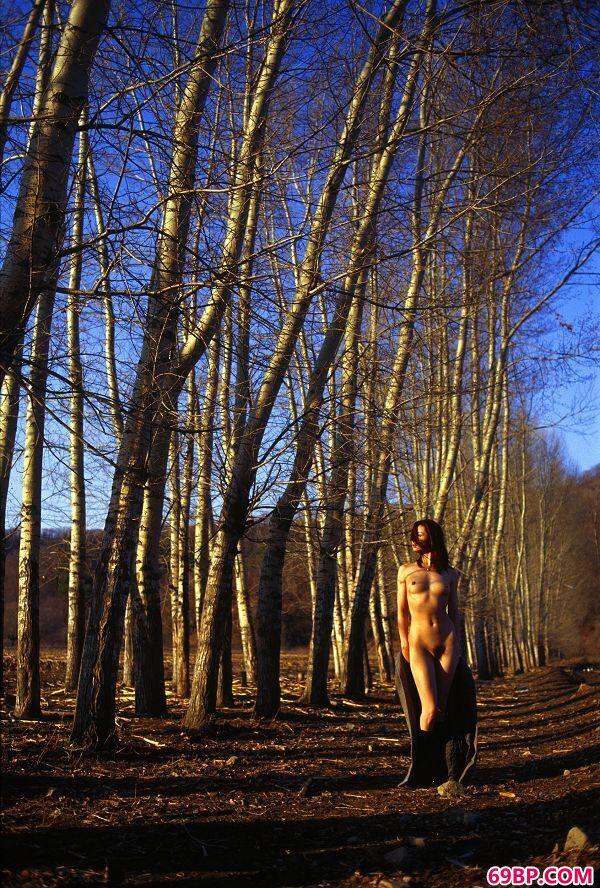 颜芮―《树林》2